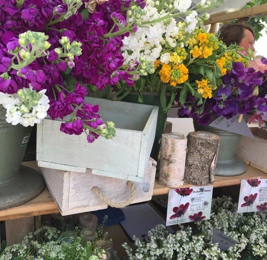 Flowermarket1_HHDeern